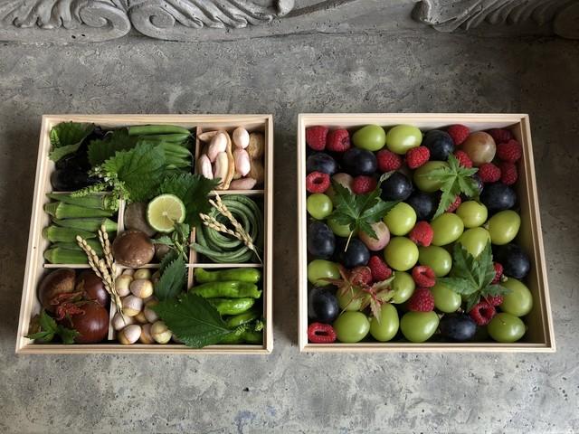 京の野菜重と秋の果実箱 二段重