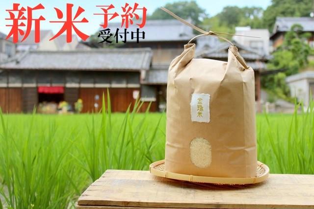 新米予約【金鵄米/玄米/10kg】きんしまい2021年産ヒノヒカリ