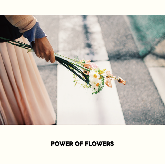 【全国発送】<9月の切り花セット> POWER OF FLOWERS