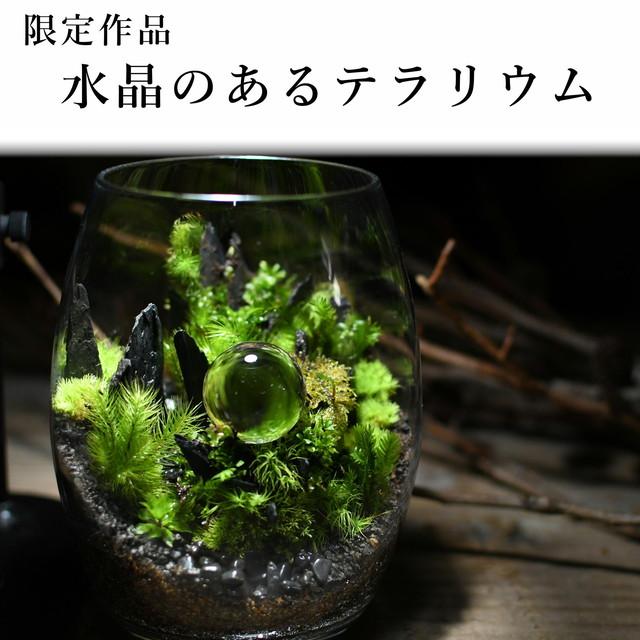 水晶のある苔テラリウム2021.1.25 #6【苔テラリウム・現物限定販売】
