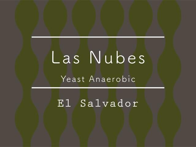 【200g】エルサルバドル /  LAS NUBES Yeast Anaerobic