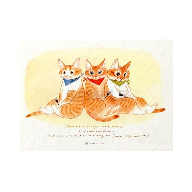 台湾ポストカード 猫「とら子猫3兄弟」