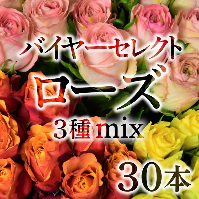 バイヤーセレクト☆ローズ  30本(3種mix)【国産バラ☆デイリーユースにおススメ】★フラワーロス支援