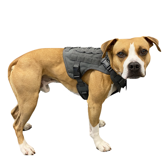 DOGGY BRO.#フロントフックループ ミリタリーハーネス【グレー/S・Mサイズ】type 2