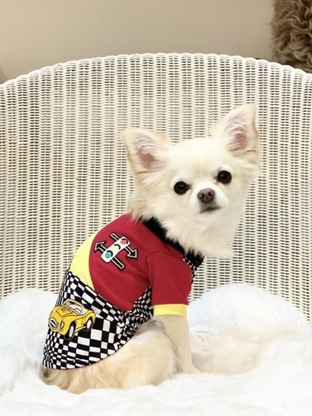 Fifi&Romeo カーレースTシャツ 2019-17