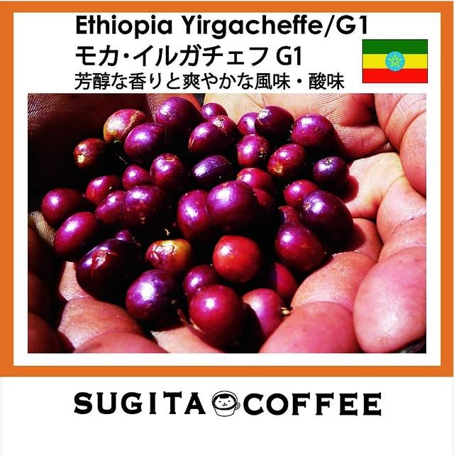 【5種お試しアソートセット】色々を少しずつ BASEだけのコーヒーお試しセット おすすめの美味しい珈琲豆 100g×5種類
