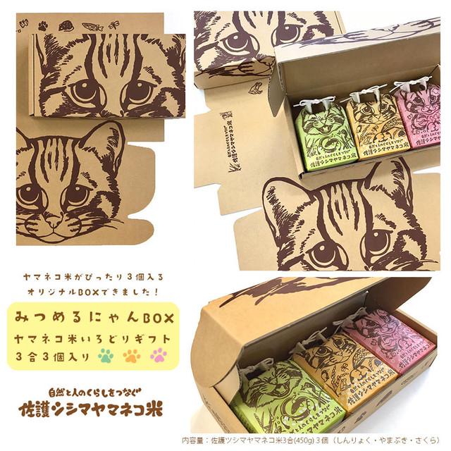 みつめるにゃんBOX【いろどりギフト3合袋3個入り】(2セット〜3セット)