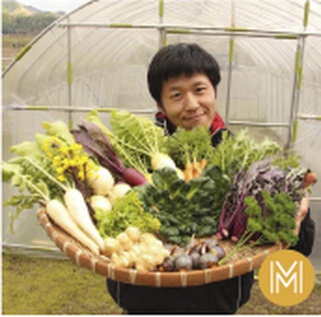 季節のお野菜 おまかせボックスMサイズ