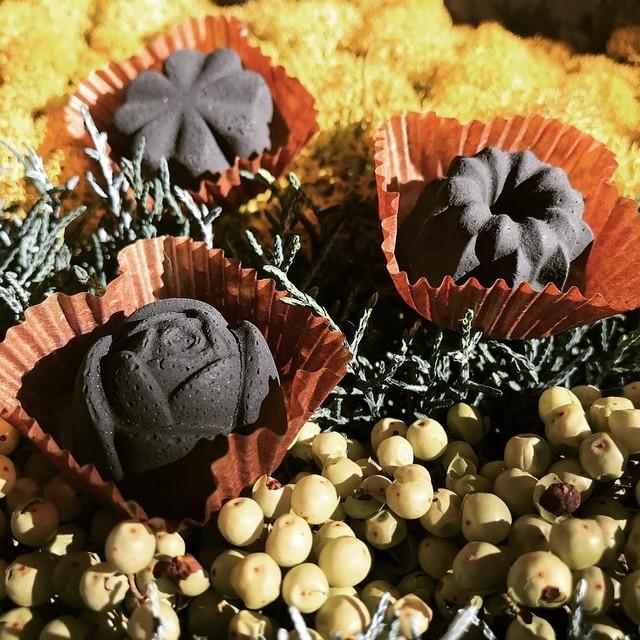炭のチョコラ 6個入り KinoKoto