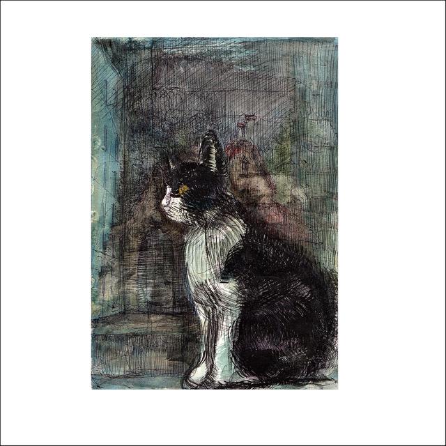 「猫の横顔」