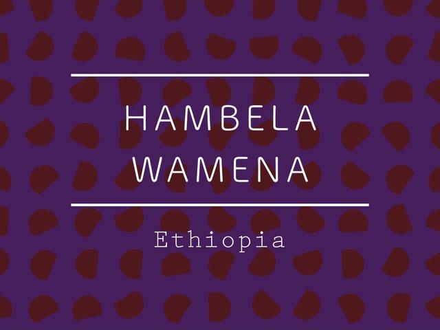 【200g】エチオピア / HAMBELA WAMENA Natural