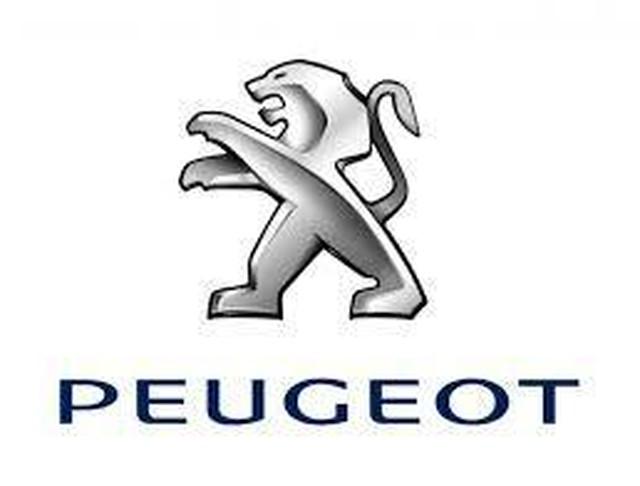 PEUGEOT 専用 Car Key Case