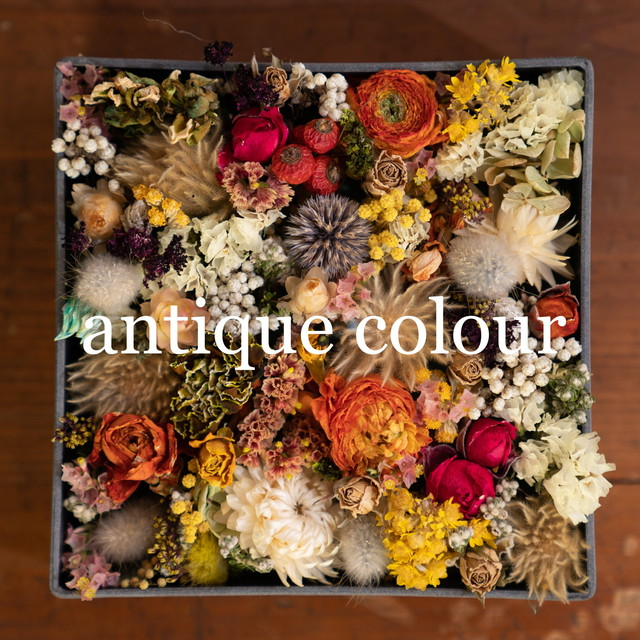 flower box【gift color】
