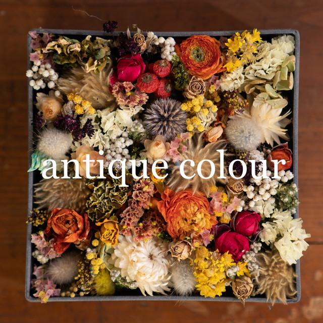 flower box【gift color】