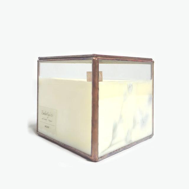 Botanical Fragrance Soy candle|Emilia Galotti von Lessing  - Magnolia -
