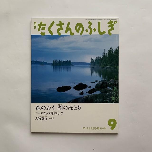 森のおく 湖のほとり / たくさんのふしぎ381号