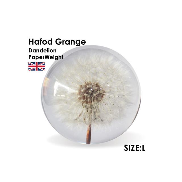 Hafod Grange Dandelon L