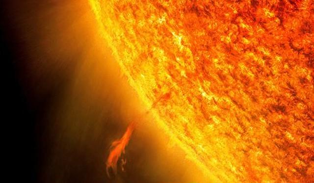動物占い『太陽チーム』で飲む!H30.6.21(木)