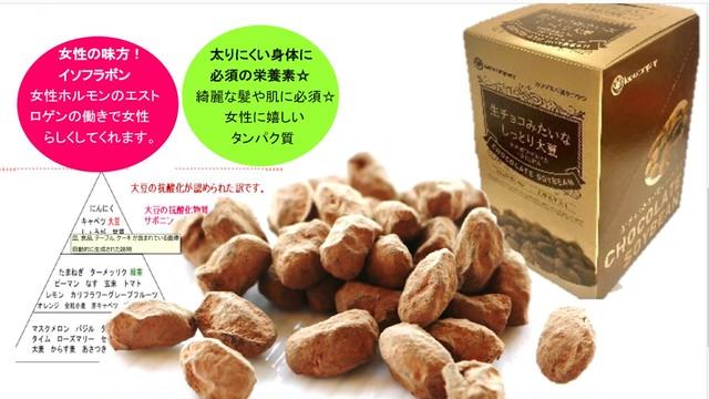 生チョコみたいなしっとり大豆17g×10袋【外箱無し】お得