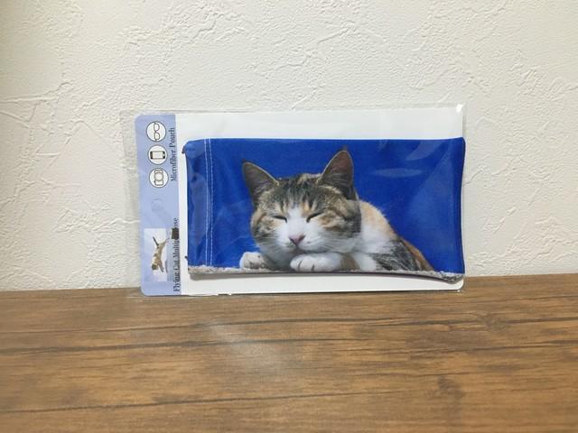 飛び猫Tシャツ1