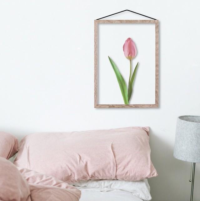 Pink Tulip / C019 / 透明ポスター
