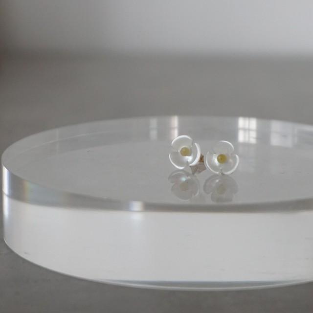 送料無料14kgf*Shell flower pierced earring
