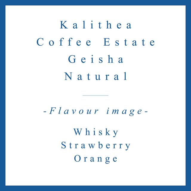 Kalithea Geisha Natural