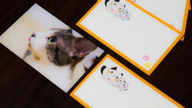 コムコナオリジナルメッセージカード【10枚1セット】