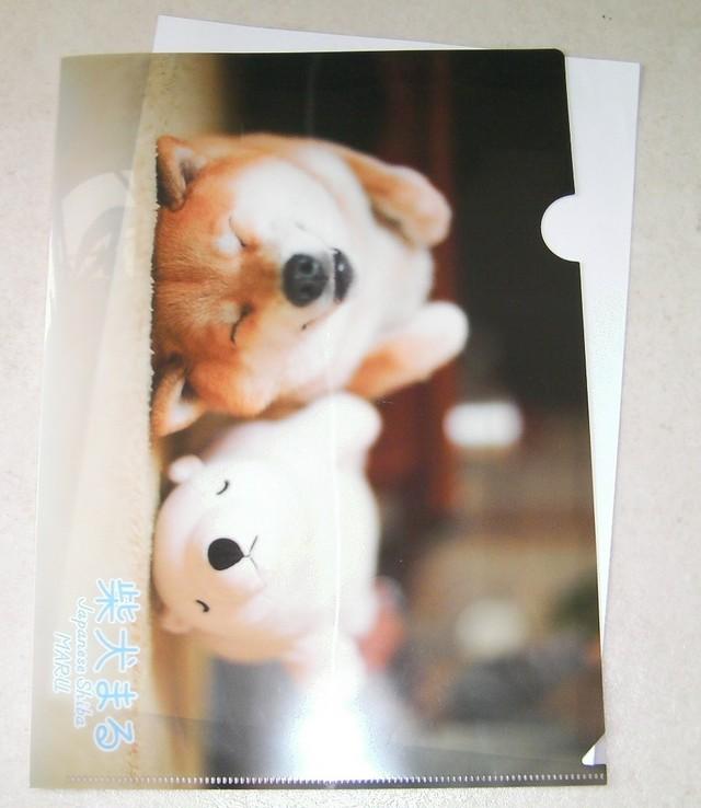 柴犬まる;クリアファイル;添い寝まる
