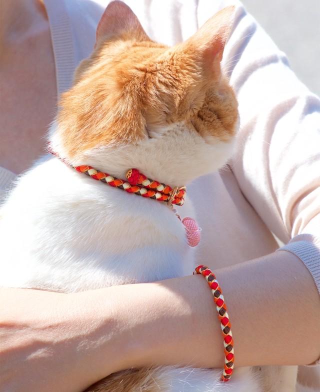 Soleil【ペア】組紐ブレスレット&猫首輪 ペアセット