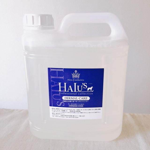 【ウイルス・菌を不活性化】HALU'S(ハルズ)ハイレベル無添加シャンプー業務用サイズ2L