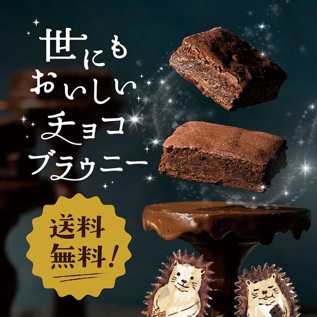 【ネコポス・送料無料】世にもおいしいチョコブラウニー9個入【税込】