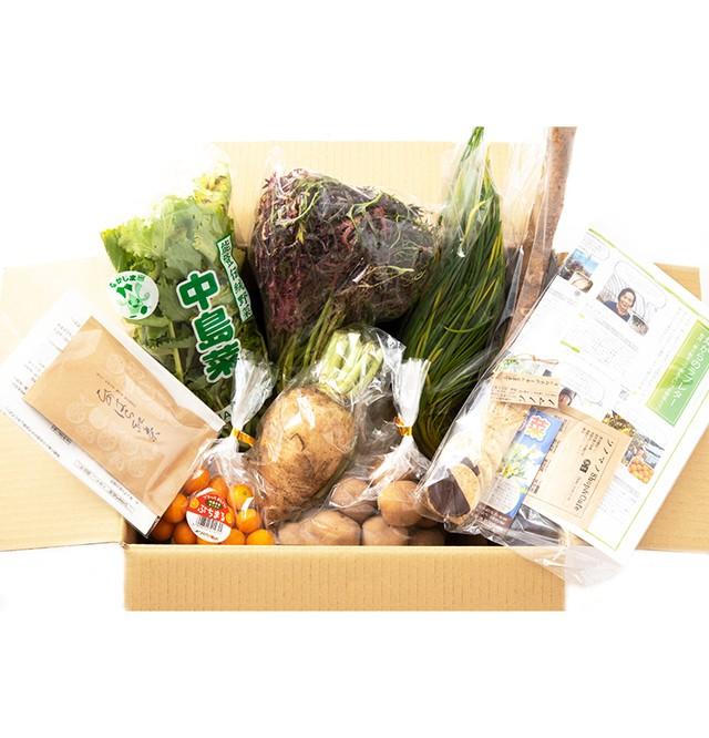 【完売御礼】ベジバルーンセット2月(如月)『寒さ耐えつつ芽生えいづる野菜たち』
