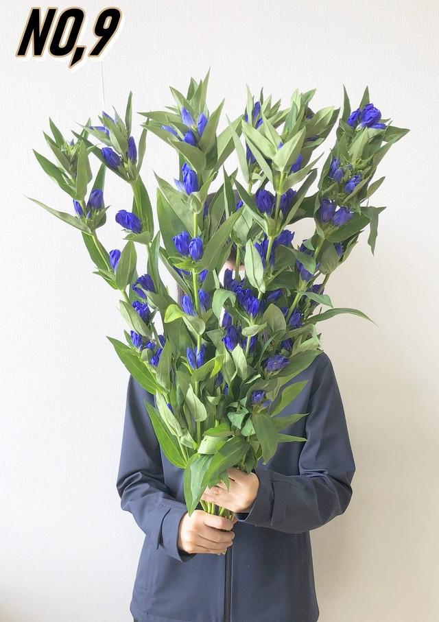 ★ お墓参りへ行こう!国産お供え花シェアBOX50 №6【ロスフラワー救済!】