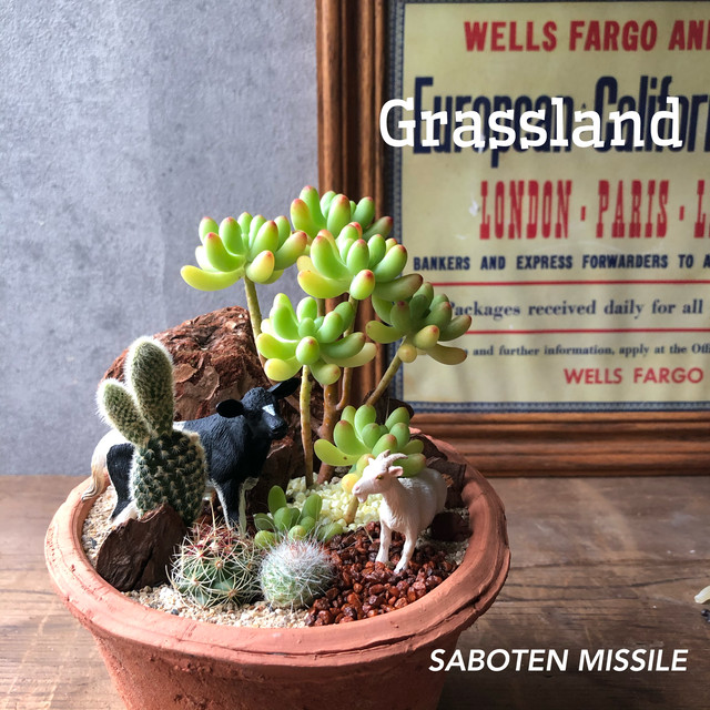 Grassland ウシ&ヤギ