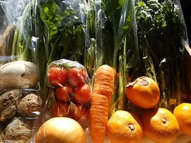 送料無料 免疫力を高める野菜と果物宅配セット 大人1~2人分