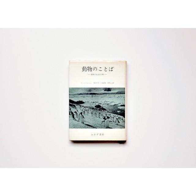 赤江瀑著『蝶の骨』徳間文庫
