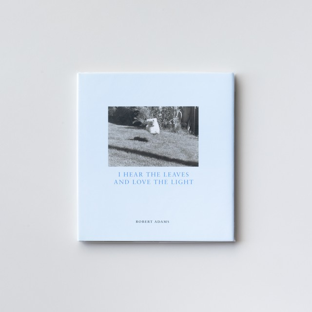 (Signed) I Hear The Leaves And Love The Light Sally in the Back Yard by Robert Adams