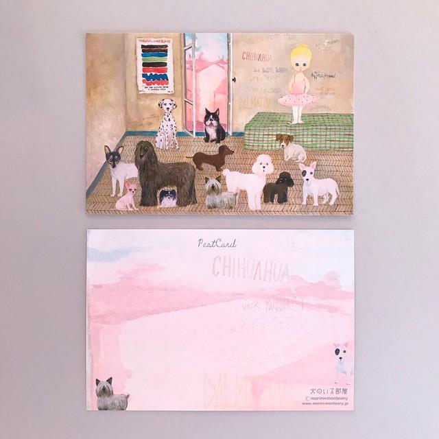 POST CARD「animals」no.132