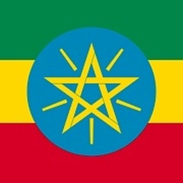 エチオピア イルガチェフェG-1ウェギダ・ブルー  100g