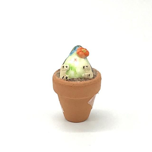 【きゃねこ】 鳥のお花屋さん②コザクラインコ(シーグリーン)