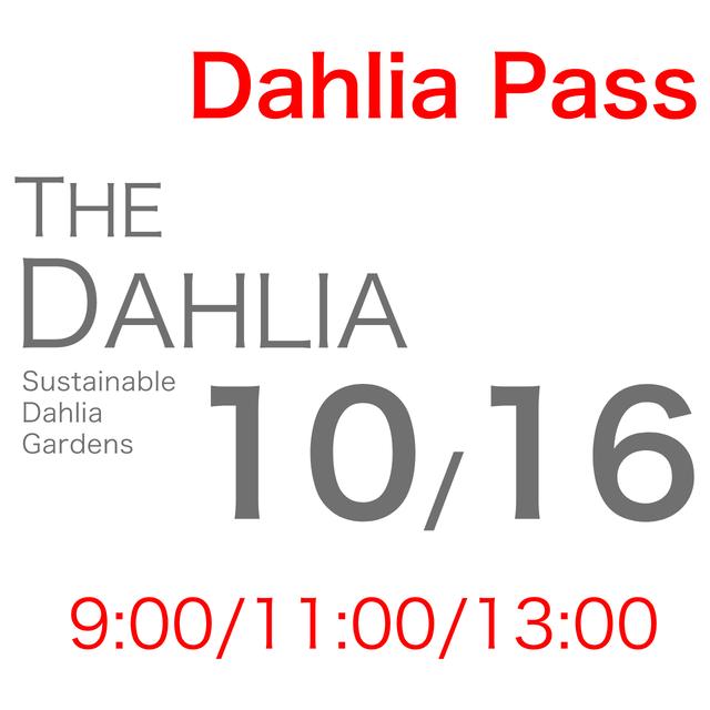 10月16日「THE DAHLIA」摘み採り園チケット