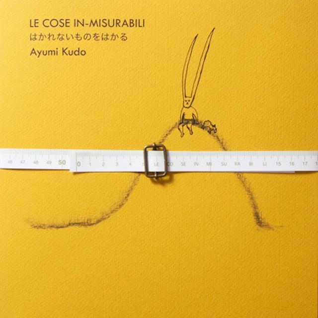 はかれないものをはかる(青幻舎)Unmeasurable Things/ Le cose in-misurabili Ayumi Kudo