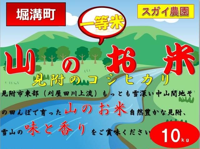 令和1年度【堀溝町】(精米)スガイ農園の見附産熟年コシヒカリ(10kg)