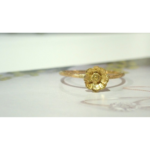 Brass twist ring