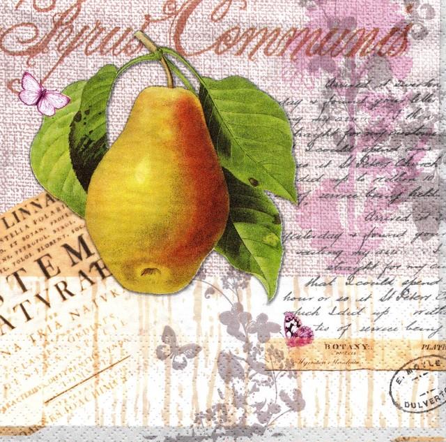 【Nouveau】バラ売り2枚 ランチサイズ ペーパーナプキン Botany Pear ナチュラル