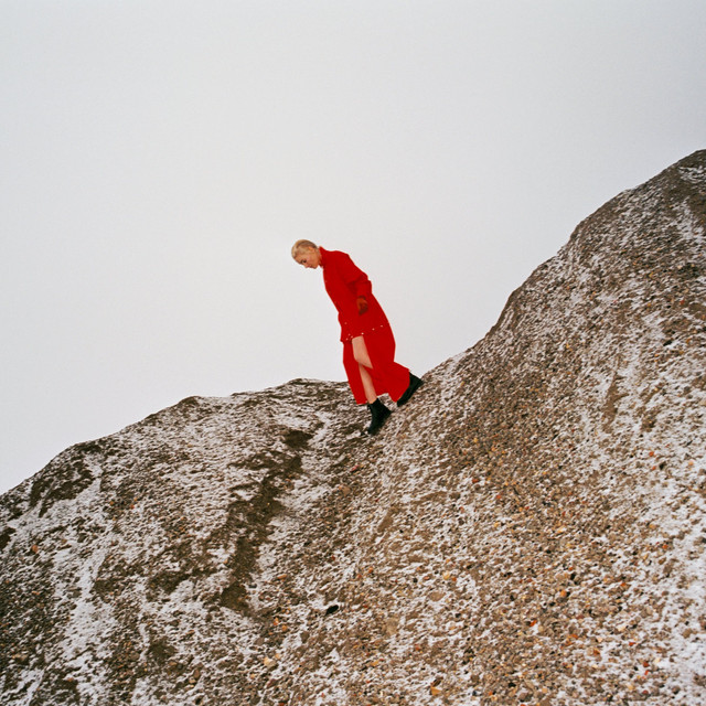 Cate Le Bon / Reward(LP)