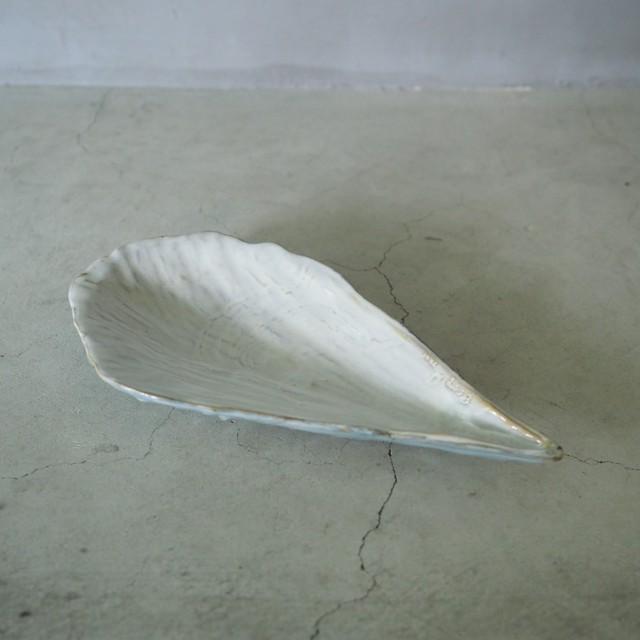Rough Pen Shell Plate