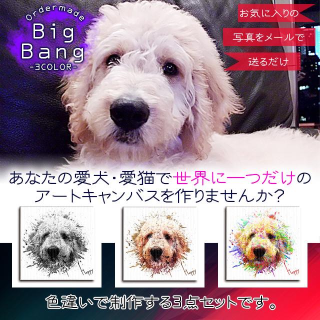 【Big Bang -3color-】オーダーメイド Mサイズ 3点セット 愛犬・愛猫でオリジナルのアートキャンバスを名入れで制作します。
