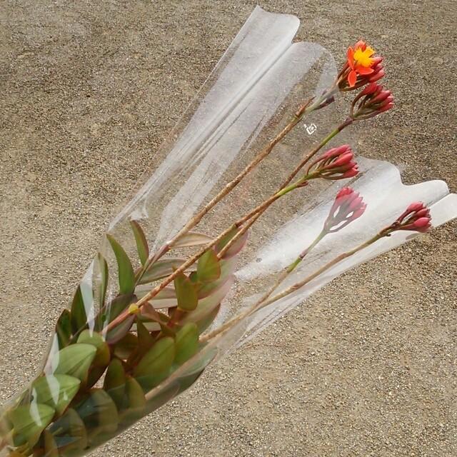 ホワイトデーにも♪オンリーユーの花束
